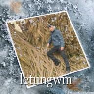 letungwm