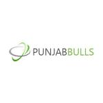 punjabbulls