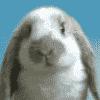Selling Dev Kit - last post by FiredDark Sumo