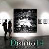galeria d14