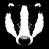 Badgers's Photo