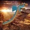 dragon des iles pipi