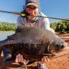 Pesca do Rei - Dourado em p... - last post by gilliamgatto