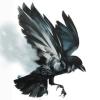 [Zamknięty] : Brak Slota na serwerze █ [PL] Skillownia.com █ [AIM DM HS ONLY][128TR][DROP] - ostatni post przez Lucifer