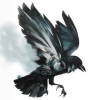 [Zamknięty] : Brak Slota na serwerze █ [PL] Skillownia.com █ [AIM DM HS ONLY][128TR][DROP] - last post by Lucifer