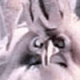 m27315's avatar