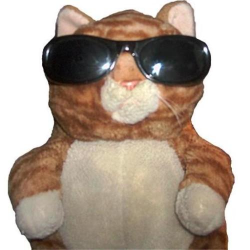 Megakoresh profile picture