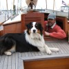 Looking for info on cruising to Catalina - last post by Willin'