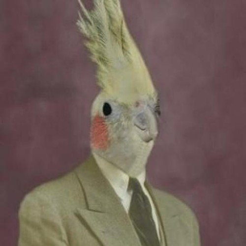 sagerfrog profile picture