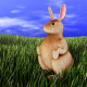 saltorio's avatar