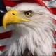 Cyberbanger
