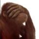 Agorna's avatar