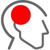 Forebrain Neurotecnologia