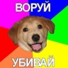 Дрозд's picture