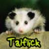 talflick avatar