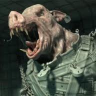 Piggod