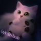 WindiePanda's avatar