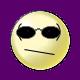 frogskins nonpolarized iridium wayfarer sunglasses