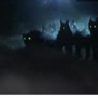jahzwolf