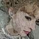 Portrait de sinaia