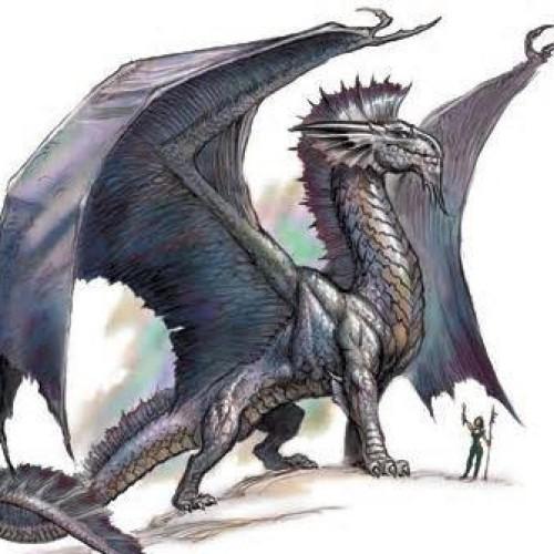 QS Dragon profile picture