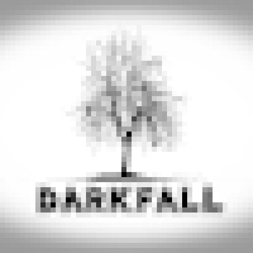 darkfs profile picture