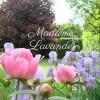 Madame Lavande