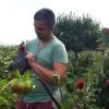 sere si solarii - last post by ma04zsx
