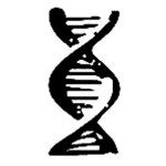 Profile picture of DNA Painting