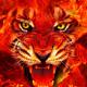 Rooneyryanking2's avatar