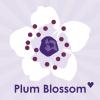plumblossom33