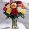 Jaffy-fleur de lys