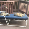 Lowe's Home Improvement - last post by bunny