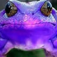 Horned Frogger