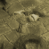 Morbus's avatar