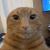 oggymerp's avatar