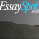 Gravatar of Essay Editing