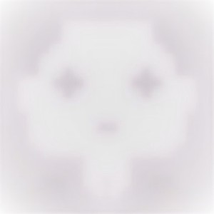 Profile picture for K Lim