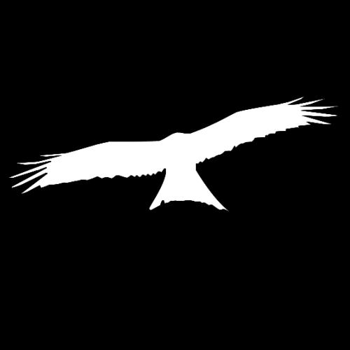 runar profile picture