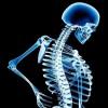 opgevraagde waarden uit een mysql database in een array plaatsen - laatste bericht door bone