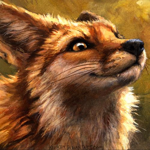 KewlFox2001 profile picture