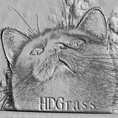 HDGrass profile picture