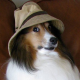 Moofius2's avatar