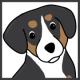 Alfie | Alfie's Blog