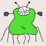 Profile picture of pepe1