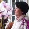 Blog orchidée