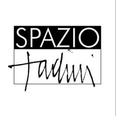 Casa Museo Spazio Tadini