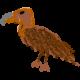 vulture's avatar