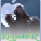 Photo du profil de KingsolitR