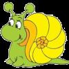caracolus